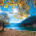 Achensee_autumn_456626_31997_t