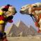 Egyiptomi tevék