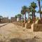 Szfinxsor a Luxori templom irányában
