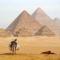 Öszvér a piramisok előtt