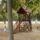 Szepsegeink-001_457590_84393_t