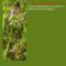 Sár-hegyi védett növényeink 16