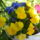 rózsák és egyéb virágok