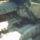 Cabrio_21_466941_92599_t