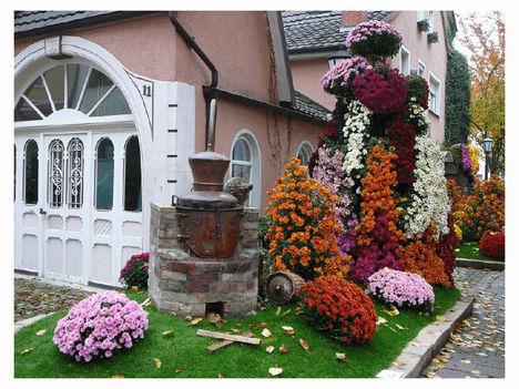 krizantén fesztivál Lahr-ban Németországban 28