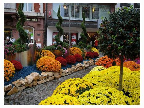 krizantén fesztivál Lahr-ban Németországban 32