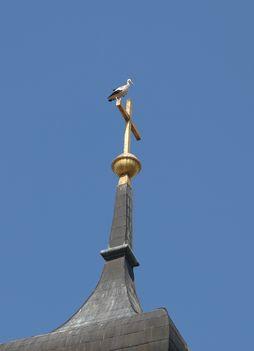 A gólya Keresztje