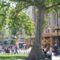 bp 036 Vörösmarty tér