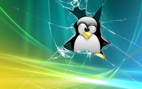 Linux vs.Vista