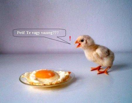 Peti, te vagy?!