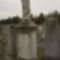 Zsidó-temető 6