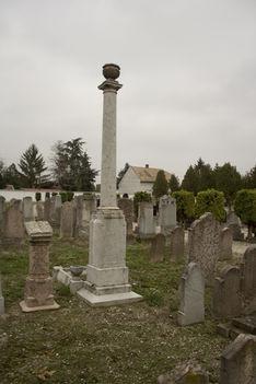 Zsidó-temető 8