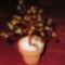 Őszi gyöngyfácska