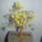 sárgafa