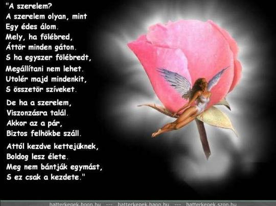 titkolt szerelem idézetek Idézetek képekkel: Ugye milyen igaz? (kép)