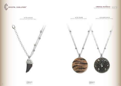 2010-s Crystal Evolution katalogus 6