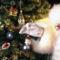 Karácsony és Mikulás 30