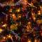 Karácsony és Mikulás 49
