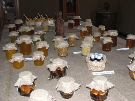 Óváros + méhész háza 14
