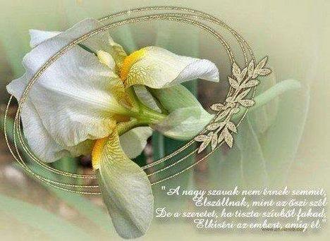 idézet tiszta szeretet