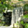 000167_ss_mayanwaterfall3d_lg_488541_81845_t