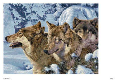 Farkasok 6