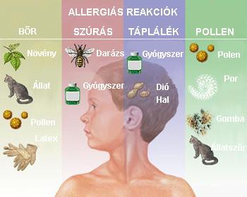 allergenek