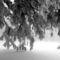 Pilis télen 3