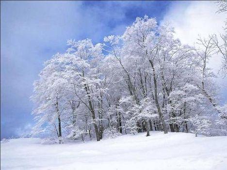 télhez tartozó örömök 5