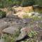 A Chapada kövei, virágai, vízei