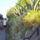 Bibinje-007_499674_36495_t