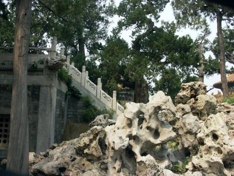 DZ-Peking-098