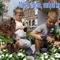 Makó virágos európai kisváros