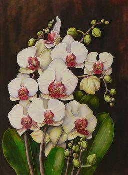 Orchidea 07 Phalaenopsis bouquet, selyem,40x30 cm