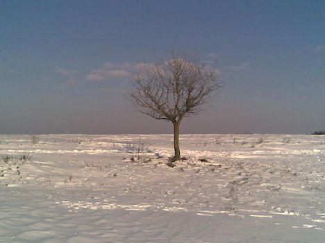 Téli magány