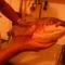 Amur 5 kg