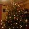 A mi karácsonyfánk 2009
