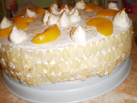 barackos túrós torta 1