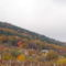 Őszi domboldal