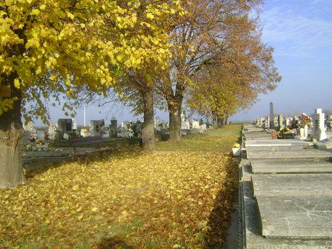 Őszi temető 1