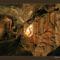 Postojna-barlang, Szlovénia 2007_Postojna37_800