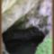 Zeusz-barlang, Kréta, Görögország 1