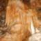 Aggteleki Baradla barlang - a Retek ág