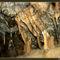 Béke-barlang, Jósvafő Magyarország 18