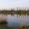 A dányi horgásztó 2009. évben