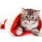 Kellemes Ünnepeket,Békés Karácsonyt Mindenkinek! 2