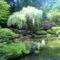 Gyönyörű kertek Japánból 1