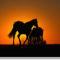 lovak a naplementében