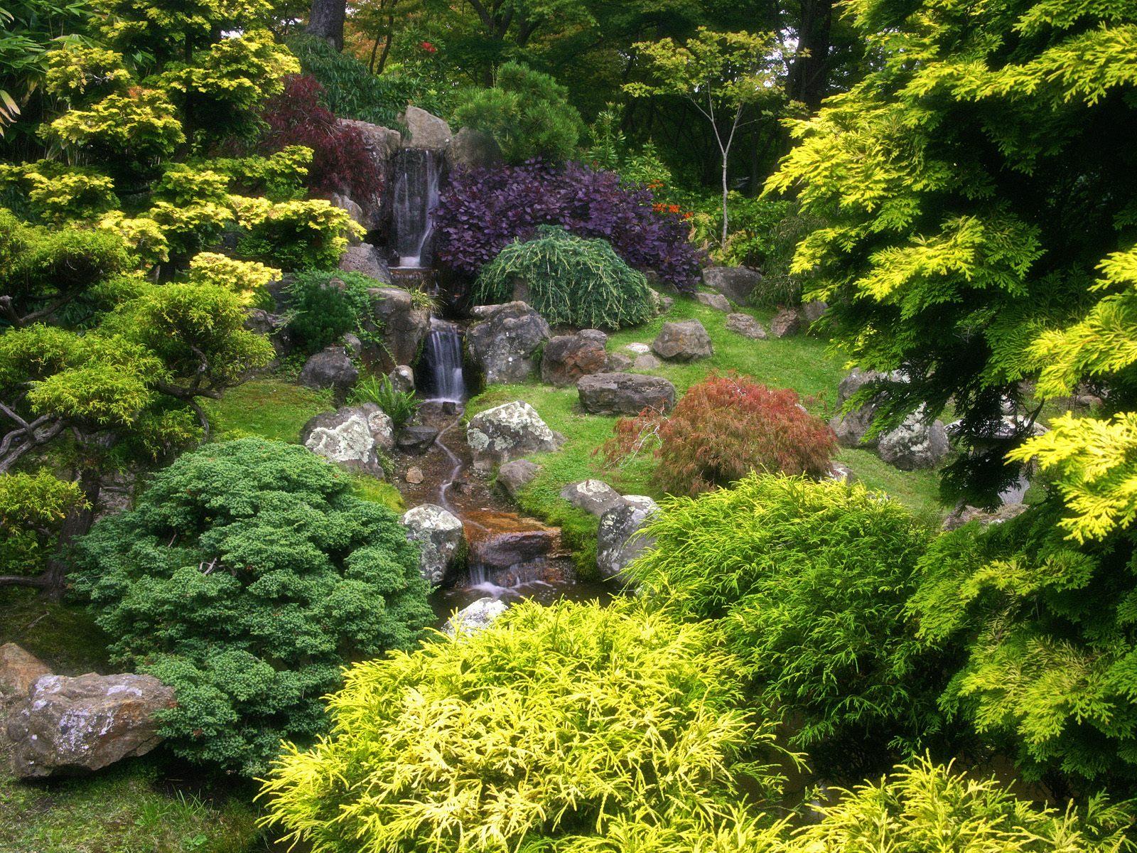 Term Szetv Delem Japanese Tea Garden Golden Gate Park San Francisco California K P
