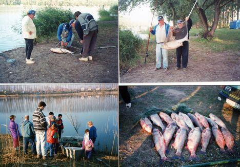 A jó horgász és az orvhorgász fogások a dányi tavon